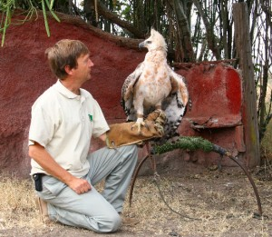 Simon  Thomsett with Crowned Eagle